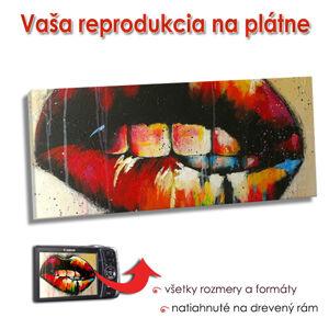 Reprodukcia na plátne - PANORÁMA