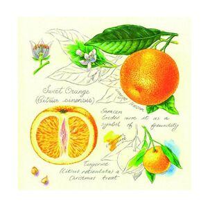 Servítky na dekupáž Pomaranče – 1 ks