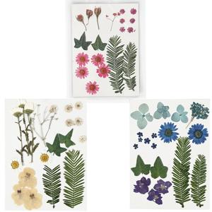 Lisované kvety a listy / rôzne varianty