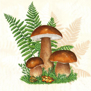 Servítky na dekupáž Boletus with Leaves of Fern - 1 ks