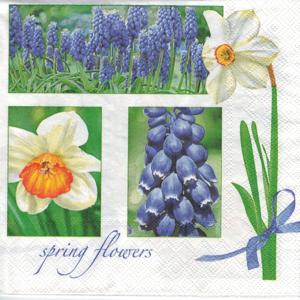 Servítky na dekupáž Muscari & Narcissus - 1 ks