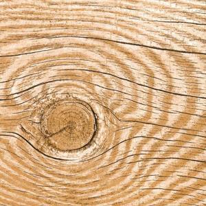 Servítky na dekupáž Natural Wood - 1 ks